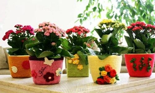 Soyez creatif avec des fleurs