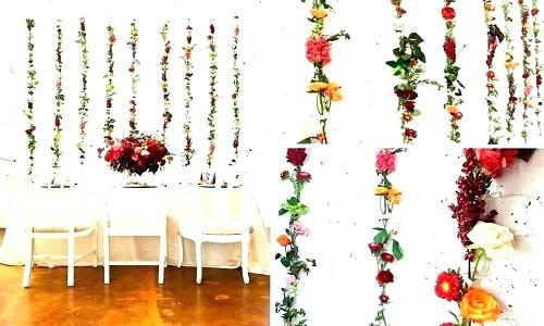 fleur sur le mur