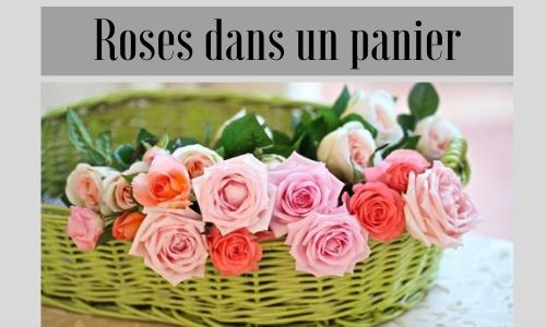 Roses dans un panier