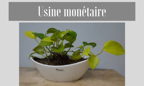 Usine monétaire