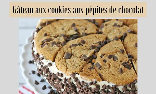 Gâteau aux cookies aux pépites de chocolat