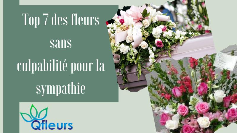 Top 7 des fleurs sans culpabilité pour la sympathie