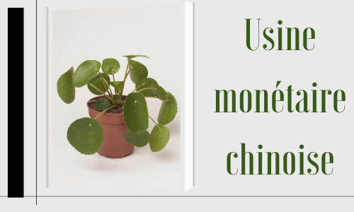 Usine monétaire chinoise