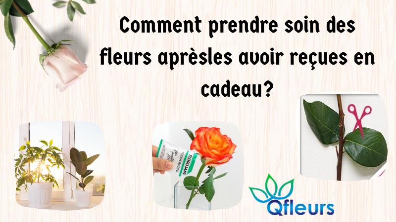 Comment prendre soin des fleurs après les avoir reçues en cadeau?