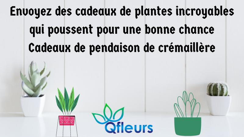 Envoyez des cadeaux de plantes incroyables qui poussent pour une bonne chance Cadeaux de pendaison de crémaillère