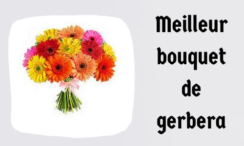 Meilleur bouquet de gerbera