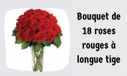 Bouquet de 18 roses rouges à longue tige