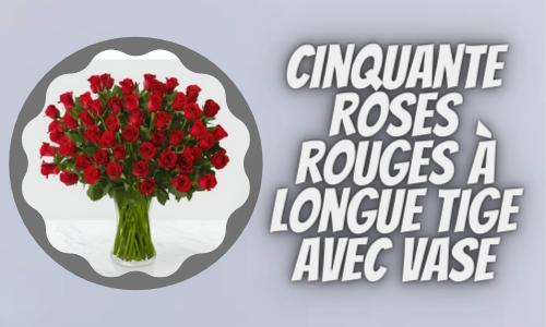 Cinquante roses rouges à longue tige avec vase