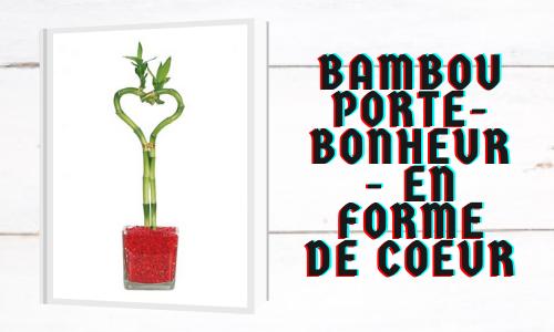 Bambou porte-bonheur - En forme de coeur