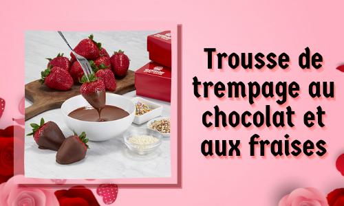 Trousse de trempage au chocolat et aux fraises