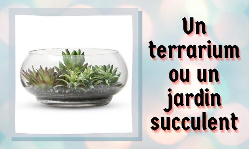 Un terrarium ou un jardin succulent