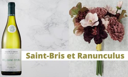 Saint-Bris et Ranunculus