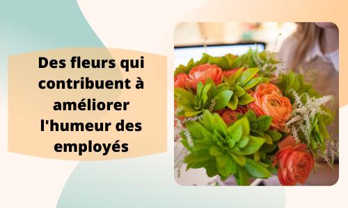 Des fleurs qui aident à améliorer l'humeur des employés
