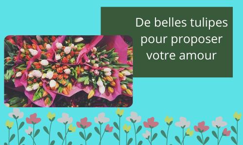 De belles tulipes pour proposer votre amour