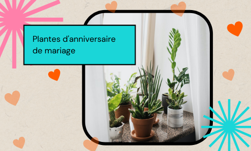 Plantes d'anniversaire de mariage
