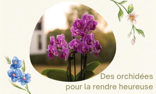 Des orchidées pour la rendre heureuse