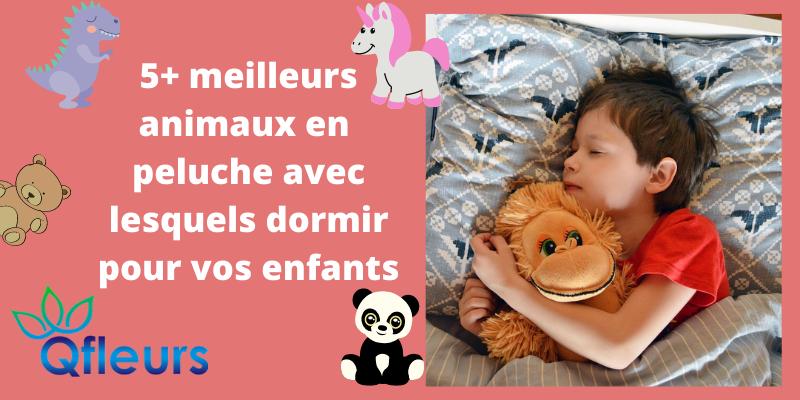 5+ meilleurs animaux en peluche avec lesquels dormir pour vos enfants