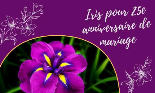 Iris pour 25e anniversaire de mariage