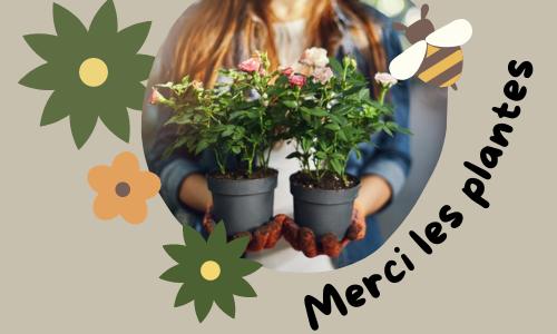 Merci les plantes