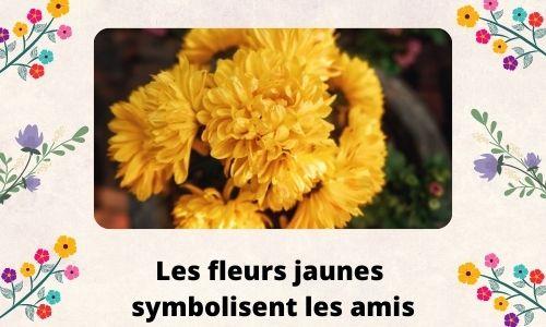 Les fleurs jaunes symbolisent les amis