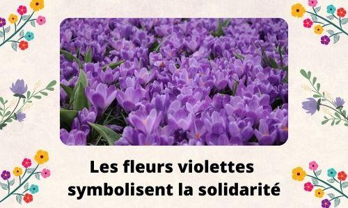 Les fleurs violettes symbolisent la solidarité