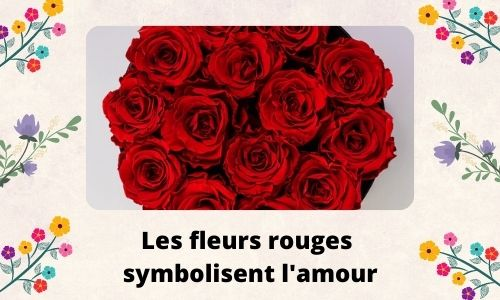 Les fleurs rouges symbolisent l'amour