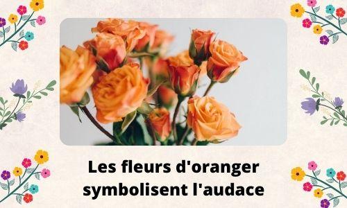 Les fleurs d'oranger symbolisent l'audace