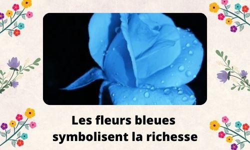 Les fleurs bleues symbolisent la richesse