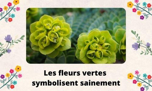 Les fleurs vertes symbolisent sainement