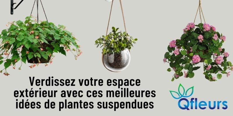 Verdissez votre espace extérieur avec ces meilleures idées de plantes suspendues