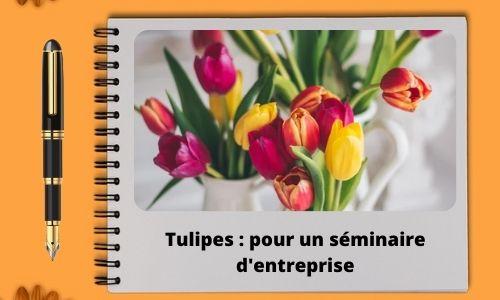 Tulipes : pour un séminaire d'entreprise